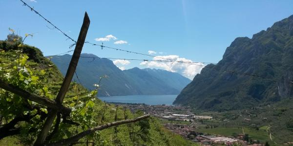 Blick auf Riva