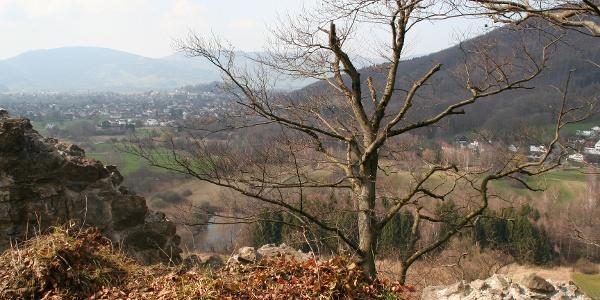 Blick auf Ried, Koblach und Montlingen