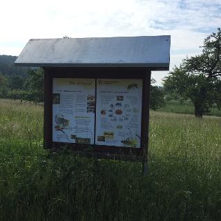 Schild am Bienenlehrpfad
