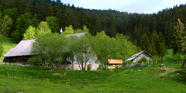 Titek Windbergpfad