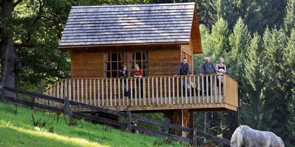 Das Baumhaus von dem Gut Vorwald