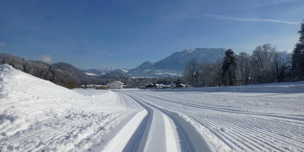 Dorfloipe Niederaudorf - Agg mit Blick auf das Kaisergebirge