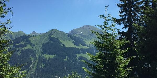 Kanzelwand, Kuhgehren und Hammerspitze