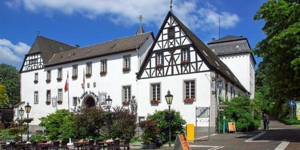 Burg_Linz