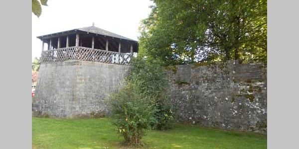 Schlossruine Freudenthal Turm
