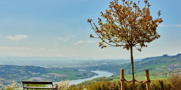 Ausblick von Klostergarten in Maria Taferl auf Donau und Nibelungengau