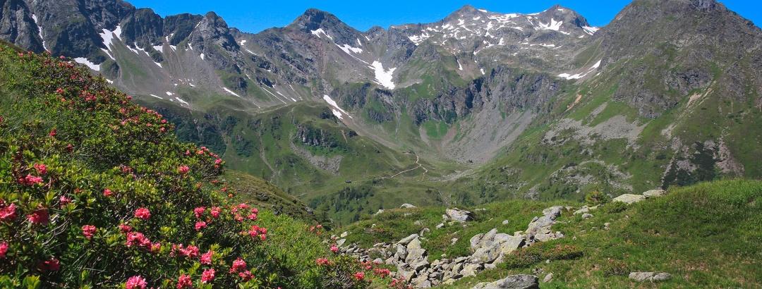 On the way to Trockenbrotscharte ridge - a look back towards Keinprechthütte