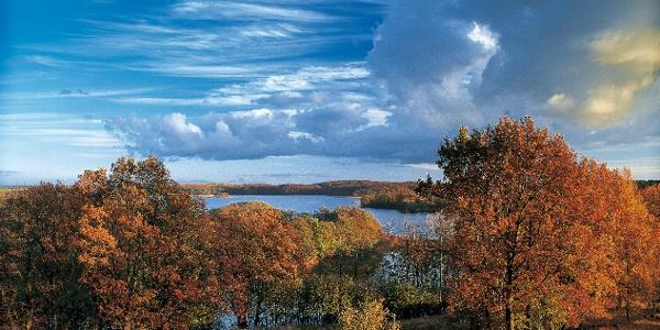 Blick über die Feldberger Seenlandschaft