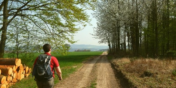 Nähe Forsthaus Erlenbusch