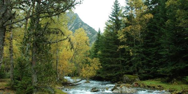 Naturpark Alt Pirineu