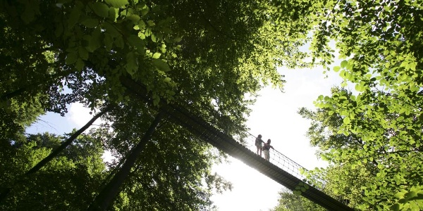 Hängebrücke bei Kühhude am Rothaarsteig