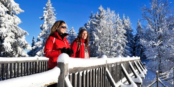 Naturpark Hohe Wand Winterwandern