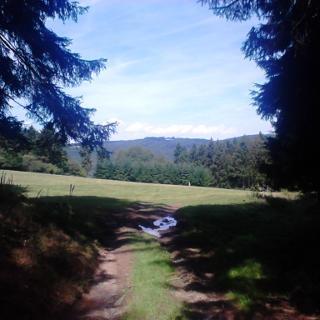 Blick auf den Steiner Berg