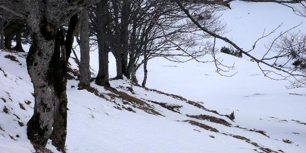 Winterlicher Aufstieg
