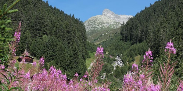 im Val Acletta