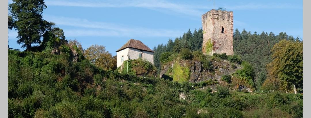 Blick auf den Hornberger Schlossberg