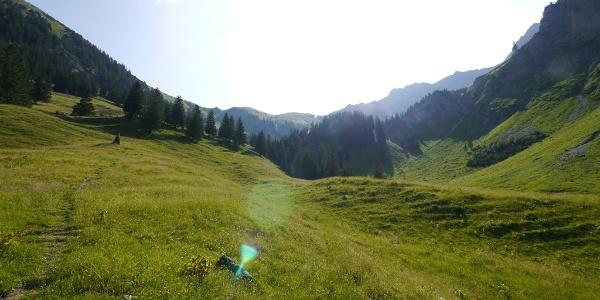 Zu Beginn der Tour führt unser Weg über Bergwiesen