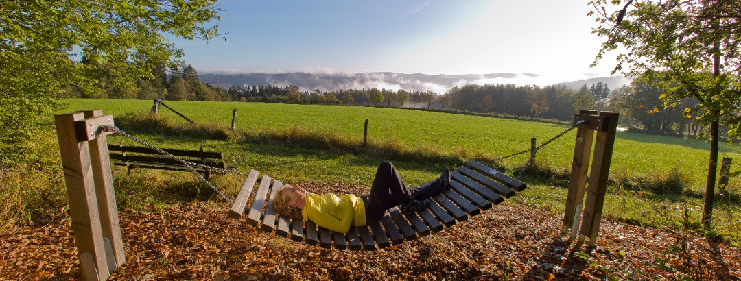 Wandern Im Sauerland Die Schonsten Touren Der Region