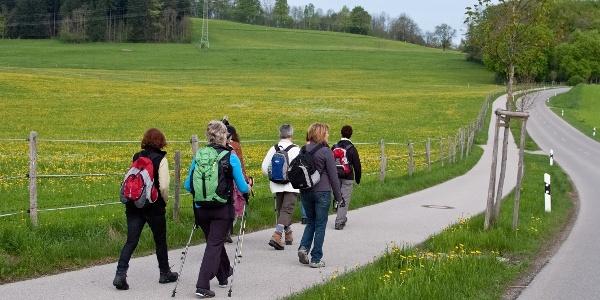 Crescentia-Pilgerweg - Impression