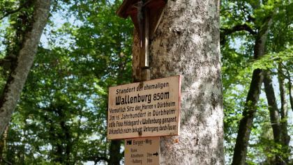 Standort der ehem. Wallenburg