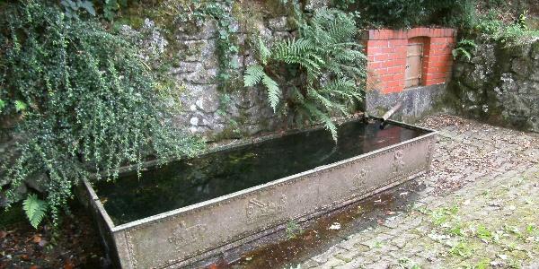 Der Kühlenbrunnen