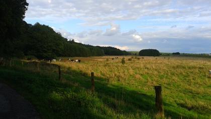 Im deutsch-niederländischen Grenzgebiet südlich des Reichswalds