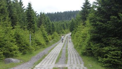Kolonnenweg am Eckersprung