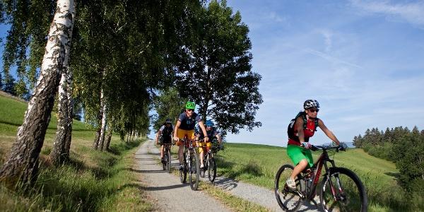 Mountainbiken in den Wiener Alpen