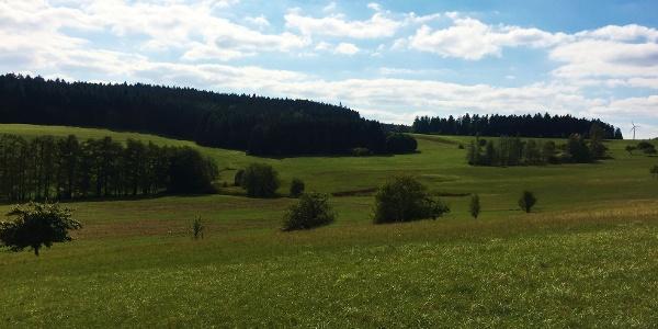 Waldhauser Lehen