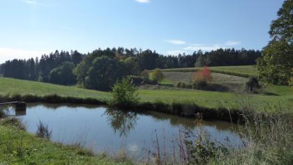 Kurz nach Hagnzell