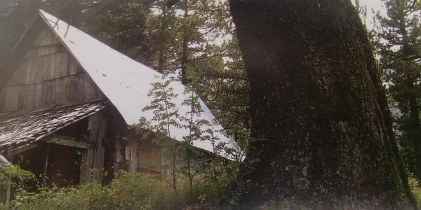 Crne Kose Shelter