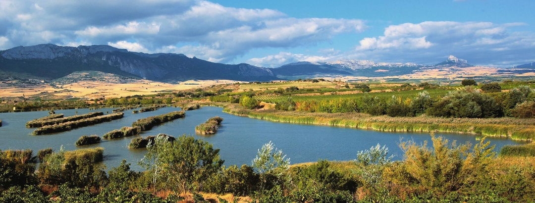 Die Lagunen von Laguardia