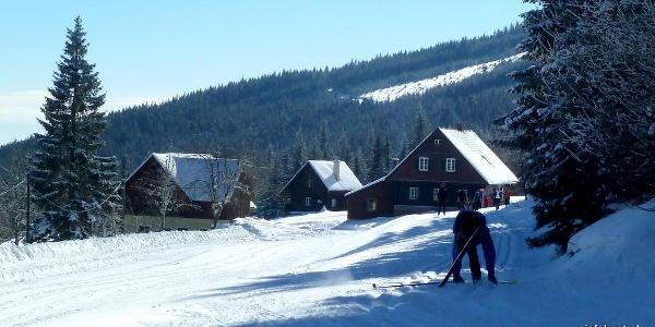 Langläufer bei der Stoffhütte