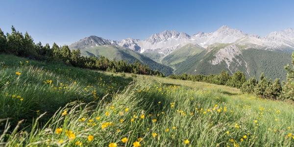 Blick ins Val Tavrü