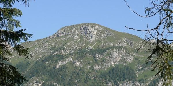 Il versante meridionale del monte della Piana dove passa il sentiero naturalistico omonimo