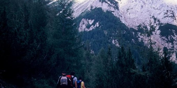 In discesa lungo il vallone del rio della Miniera. Sullo sfondo il monte Chiadin