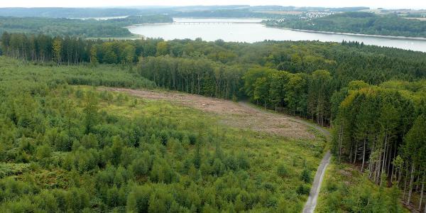 Blick vom Möhneseeturm  nach Westen Richtung Staumauer