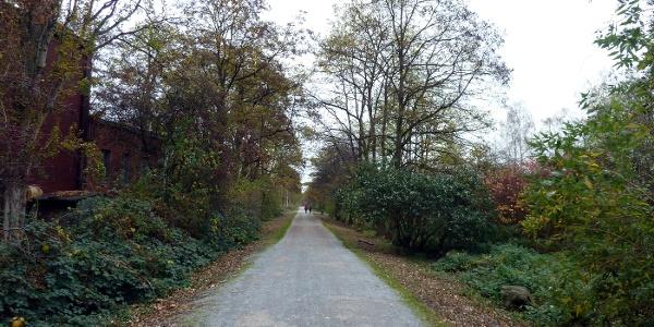 Blick von der Emscherstraße auf den Wanderweg