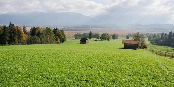 Fernwanderweg - Meditationsweg, erste Etappe - Blick auf das Murnauer Moos