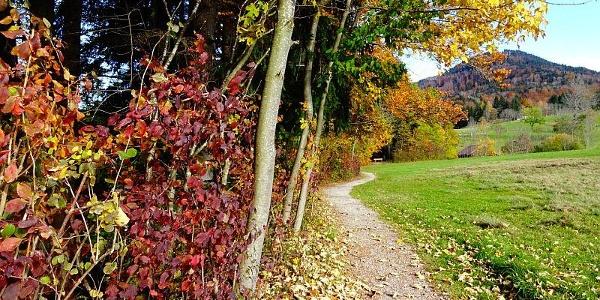 Herbst in Benediktbeuern