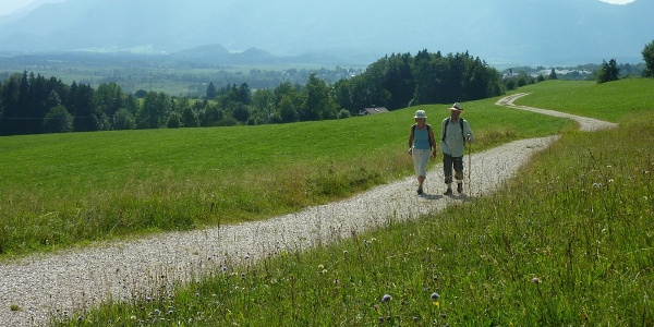 Fernwanderweg - Meditationsweg, 4. Etappe - Am Hagener Höhenweg