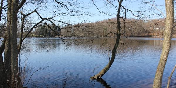 Sankelmarker See
