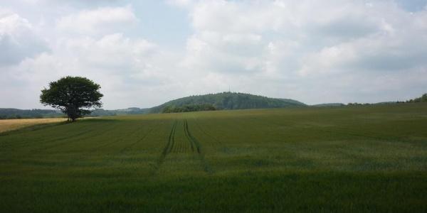 Vorbei an Feld und Flur