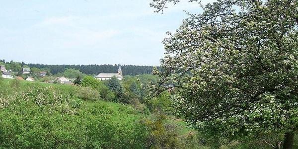 Ausblicke am Waldsaumweg