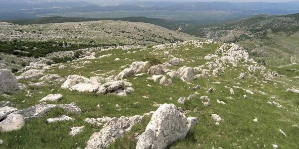 Livade i kamenovi na Kamešnici