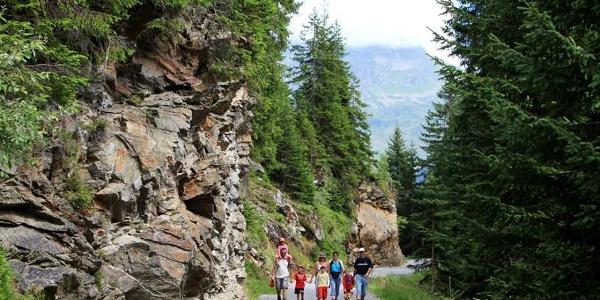 Wandergruppe auf dem Weg zum Wildried