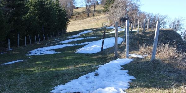 Sternleiten, im Hintergrund die Traisner Hütte