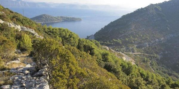 Planinarski put u blizini Sobre