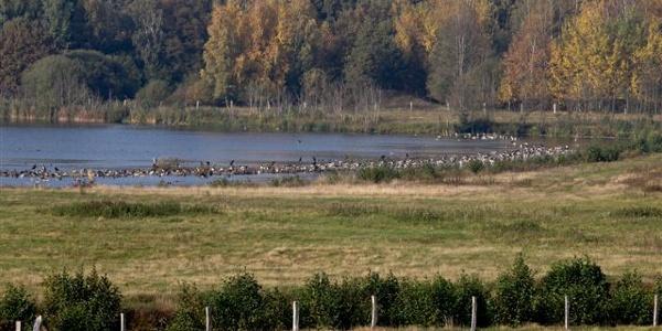 Reservebecken (Foto: Hans Macke)