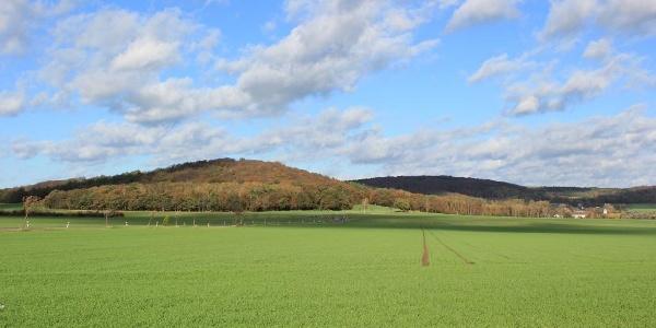 Blick auf die Hohburger Berge